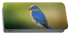 Lenore's Bluebird Portable Battery Charger by Robert Frederick