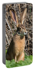 Lepus Californicus Portable Battery Charger