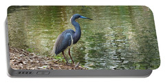 Lesser Blue Heron In Mating Plumage Portable Battery Charger