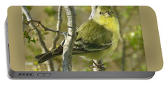 Lesser Goldfinch 1 Portable Battery Charger