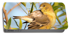 Portable Battery Charger featuring the photograph Lesser Goldfinch by Dan McManus