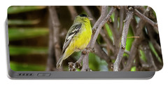 Portable Battery Charger featuring the photograph Lesser Goldfinch H57 by Mark Myhaver