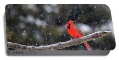 Portable Battery Charger featuring the photograph Let It Snow by Mircea Costina Photography