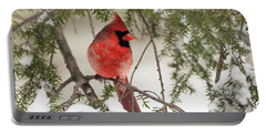 Portable Battery Charger featuring the photograph Leucistic Northern Cardinal by Everet Regal