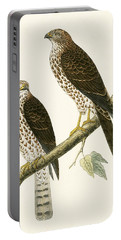 Levant Sparrow Hawk Portable Battery Charger