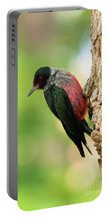 Lewis Woodpecker Portable Battery Charger