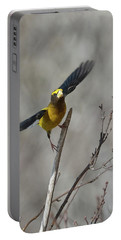 Liftoff-male Evening Grosbeak Portable Battery Charger