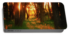 Portable Battery Charger featuring the photograph Light Of The Forest II by John De Bord