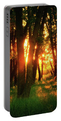 Portable Battery Charger featuring the photograph Light Of The Forest by John De Bord