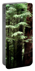 Light On Trees Portable Battery Charger