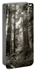 Light Through Redwoods Portable Battery Charger