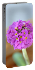 Single Pink Flower Portable Battery Charger by Marion McCristall