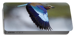 Lilac-breasted Roller-signed Portable Battery Charger by J L Woody Wooden