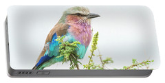 Lilac Breasted Roller. Portable Battery Charger