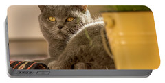 Lilli The Cat Portable Battery Charger