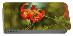 Lily #h8 Portable Battery Charger