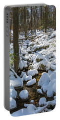 Lily Pads Of Snow Portable Battery Charger