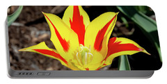Lily Tulip Portable Battery Charger