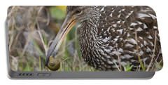 Limpkin, Aramus Guarauna Portable Battery Charger