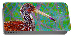 Limpkin II Portable Battery Charger by David Mckinney