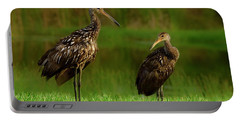 Limpkins Portable Battery Charger