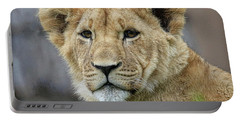 Lion Cub Close Up Portable Battery Charger