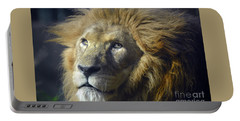 Portable Battery Charger featuring the photograph Lion Portrait by Savannah Gibbs