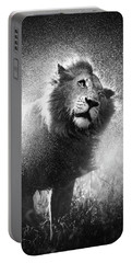 Lion Shaking Off Water Portable Battery Charger