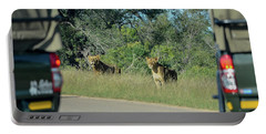 Lion Watch Portable Battery Charger
