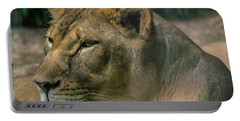 Lioness Portable Battery Charger