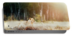 Lioness In Morning Sunlight After Breakfast Portable Battery Charger