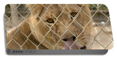 Lioness Licks Portable Battery Charger