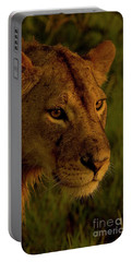 Lioness-signed-#6947 Portable Battery Charger by J L Woody Wooden