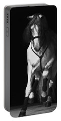 Lipizzan 1 Portable Battery Charger