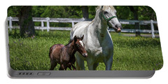 Lipizzan Horses Portable Battery Charger