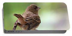 Little Bird Portable Battery Charger