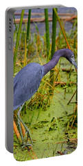 Little Blue Heron Feeding Portable Battery Charger