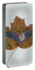 Little Brown Bat Portable Battery Charger by Ralph Root