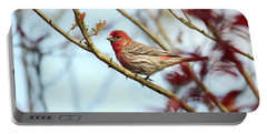 Little Finch Portable Battery Charger
