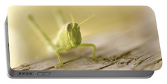 Little Grasshopper Portable Battery Charger