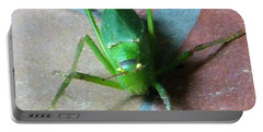 Portable Battery Charger featuring the photograph Little Grasshopper by Denise Fulmer