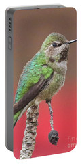 Little Hummer Portable Battery Charger