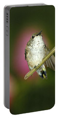 Little Humming Bird Portable Battery Charger