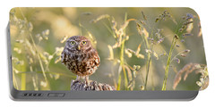 Little Owl Big World Portable Battery Charger