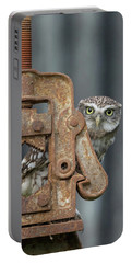 Little Owl Peeking Portable Battery Charger