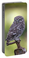 Little Owl Pipe Bender Portable Battery Charger