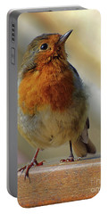 Little Robin Redbreast Portable Battery Charger by Lynn Bolt
