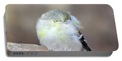 Little Sleeping Goldfinch Portable Battery Charger