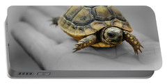 Little Turtle Baby Portable Battery Charger
