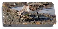 Little Western Sandpiper Portable Battery Charger